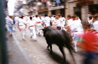 Running of the bulls, 1987
