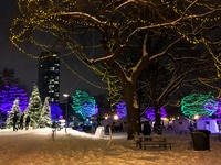 [1ST PLACE] Holidazzle in Loring Park