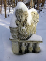 Frozen angel