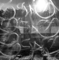 [1ST PLACE] Artistic vandal attacks train window